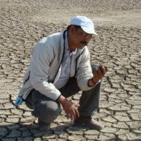 pre-bhungroo-salt01-big1